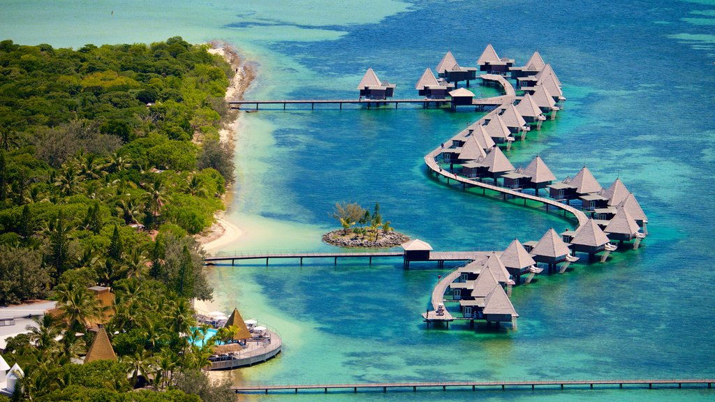 Ilot Maitre showing a luxury hotel or resort, general coastal views and colorful reefs