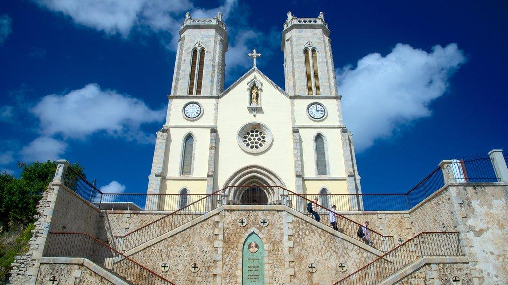 Catedral de Noumea que incluye elementos del patrimonio y una iglesia o catedral