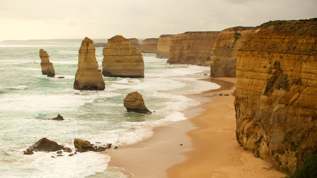 Twelve Apostles showing rugged coastline and a gorge or canyon