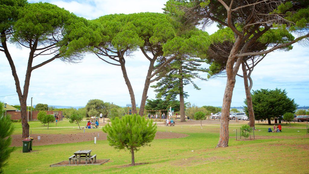 Queenscliff which includes a park