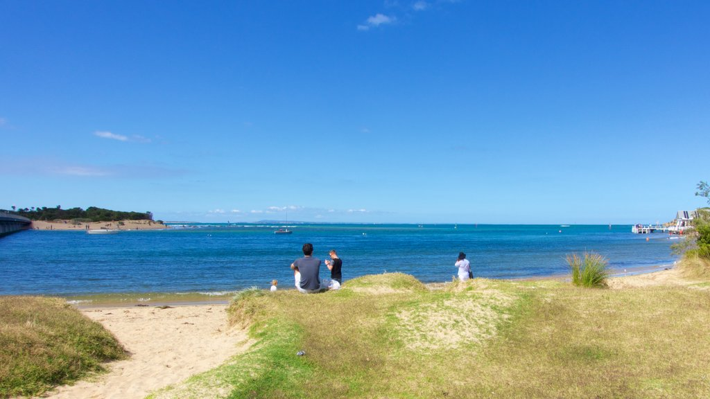Barwon Heads featuring general coastal views as well as a small group of people