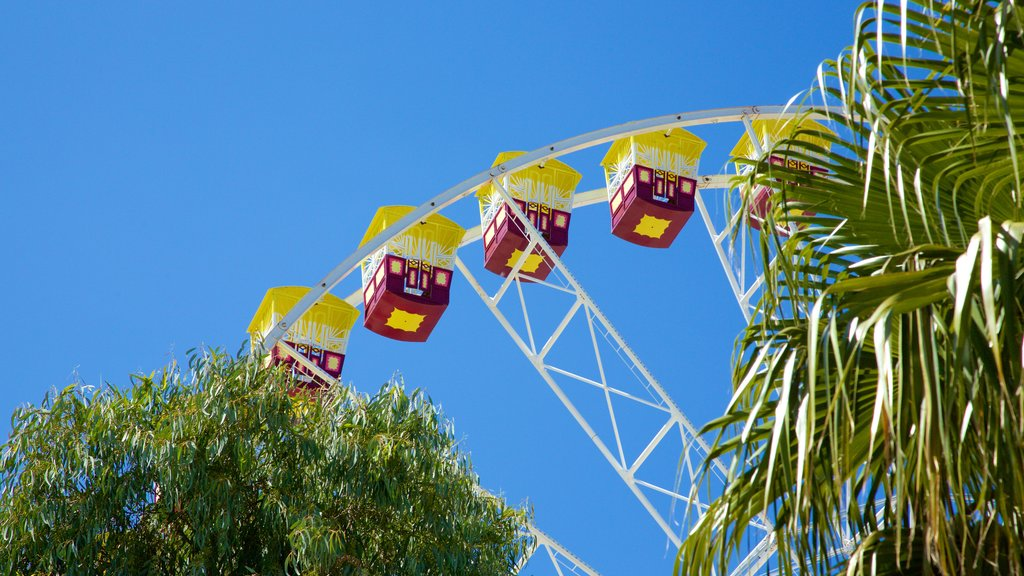 Geelong which includes rides