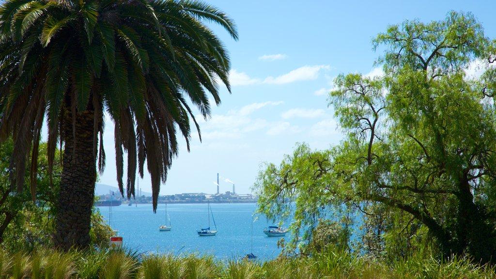Geelong ofreciendo vistas generales de la costa