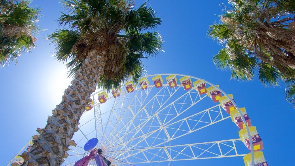 Geelong que incluye paseos