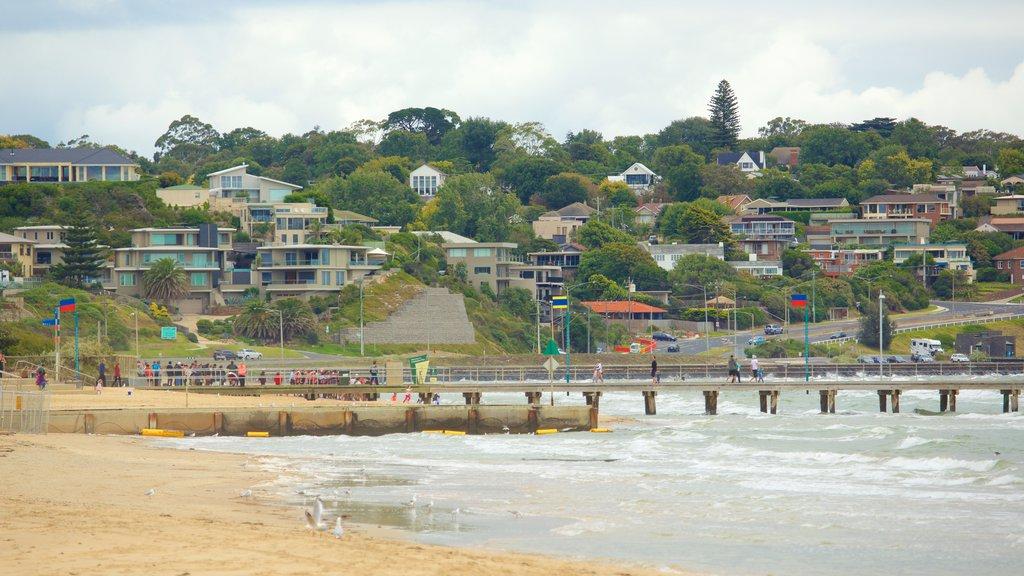 Frankston featuring a sandy beach