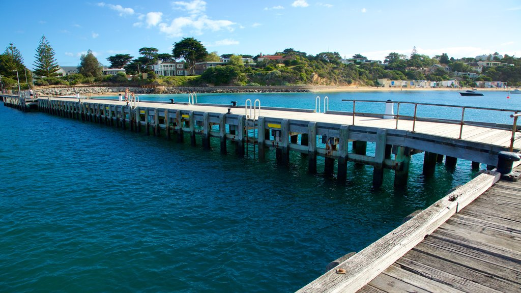 Portsea Pier showing general coastal views
