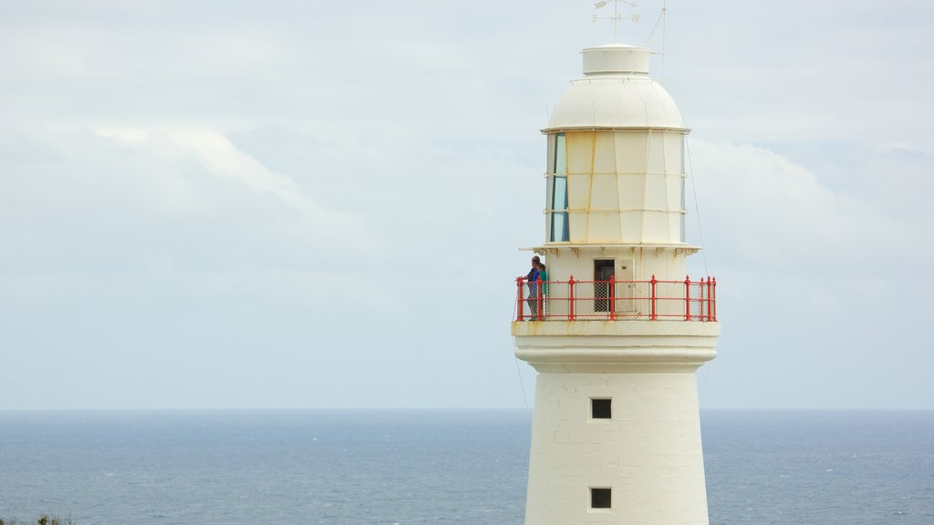 Apollo Bay showing general coastal views and a lighthouse as well as a small group of people