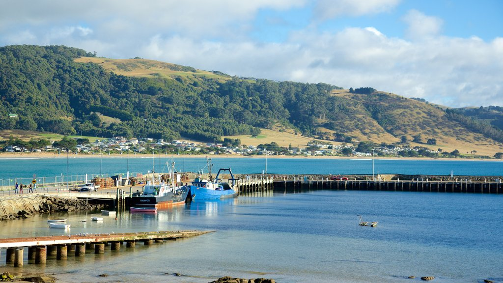 Apollo Bay Harbour showing a marina, boating and mountains
