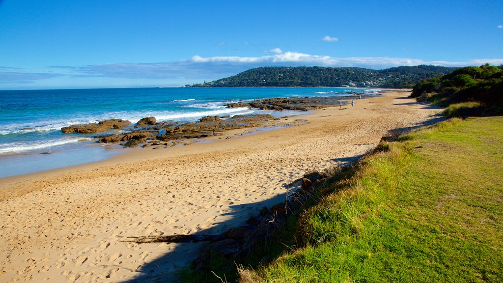 Lorne featuring rugged coastline and a sandy beach