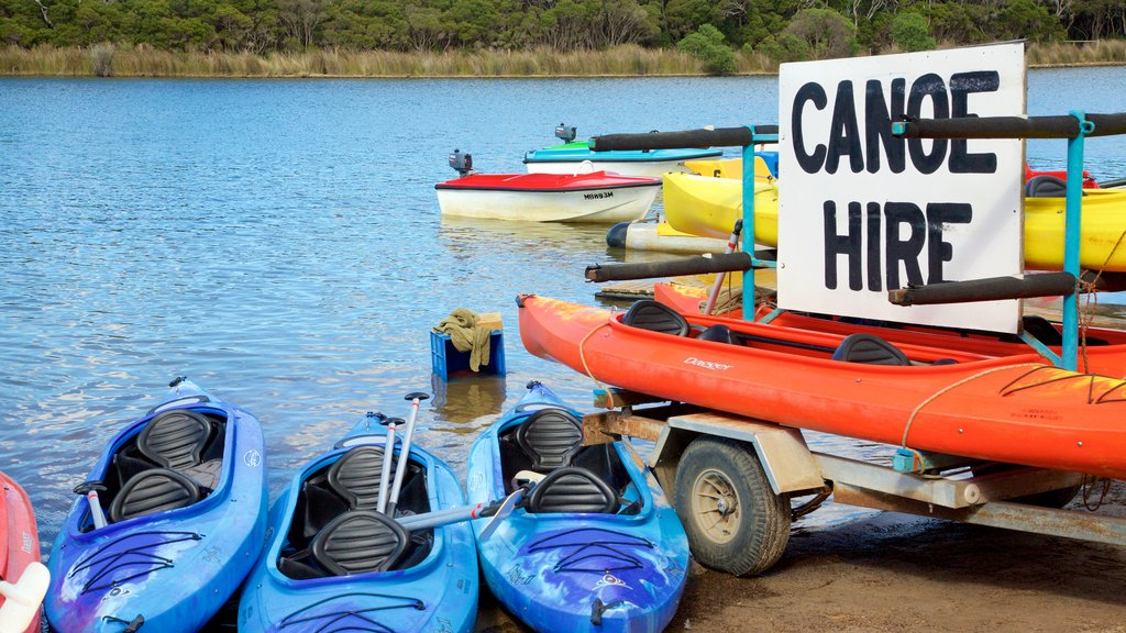 Anglesea showing kayaking or canoeing and general coastal views
