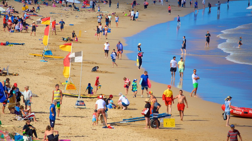 Anglesea showing a beach as well as a large group of people