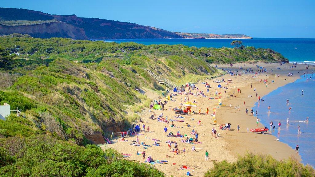 Anglesea mostrando una bahía o puerto y una playa y también un gran grupo de personas