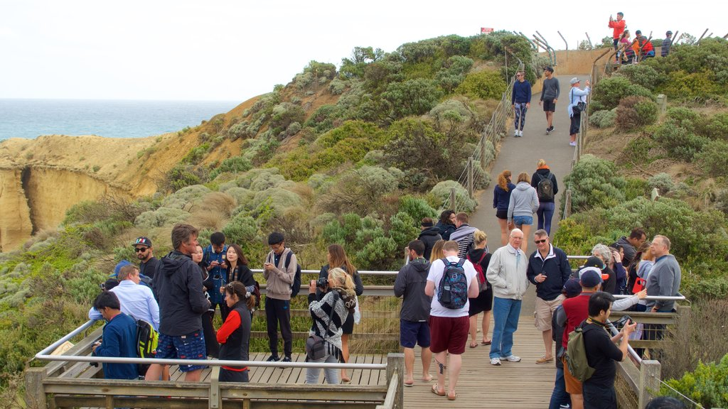 Twelve Apostles featuring views as well as a large group of people