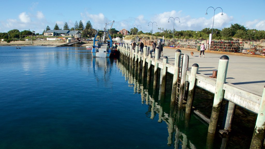Apollo Bay Harbour which includes general coastal views and a bay or harbor