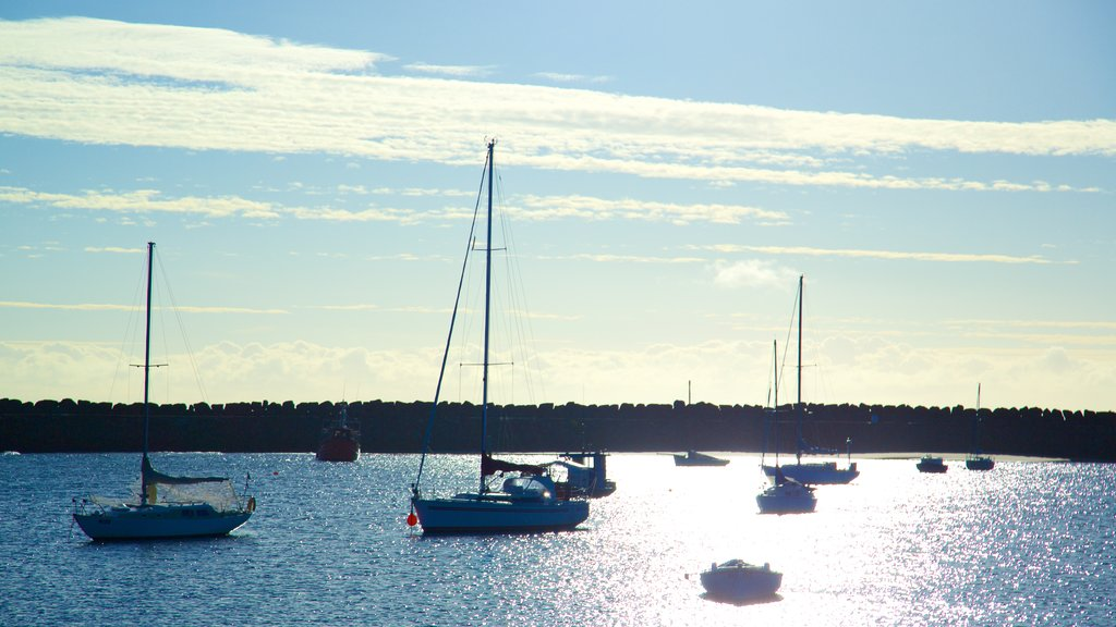 Apollo Bay Harbour which includes general coastal views and sailing