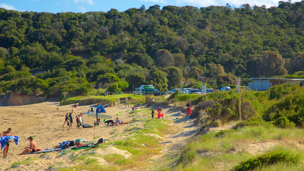 Great Ocean Road featuring general coastal views as well as a large group of people