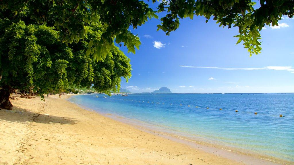 Flic-en-Flac which includes a sandy beach
