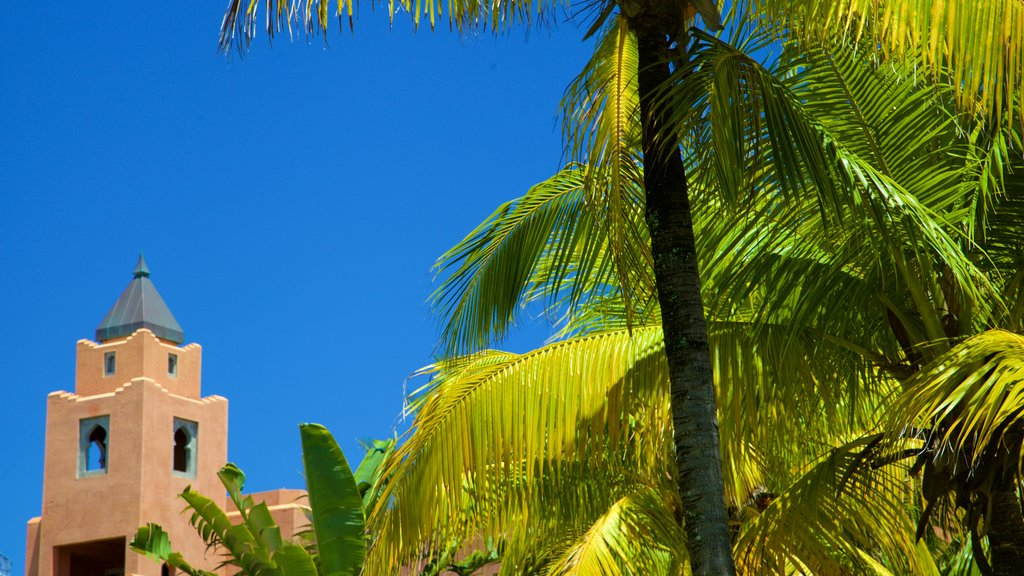 Belle Mare which includes tropical scenes