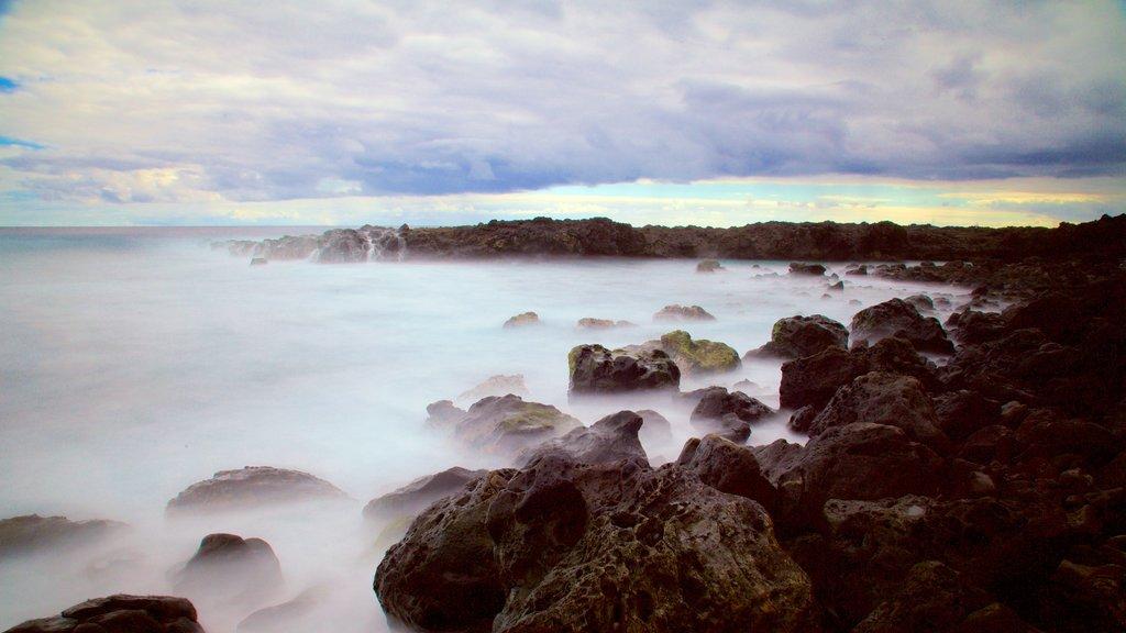 Reunion featuring general coastal views