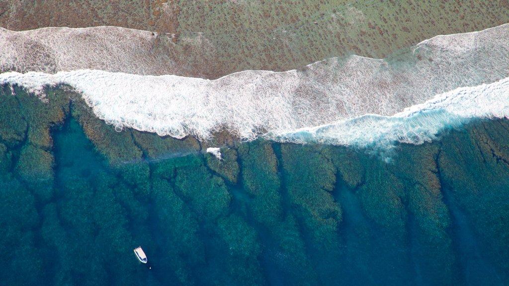 Reunion showing general coastal views
