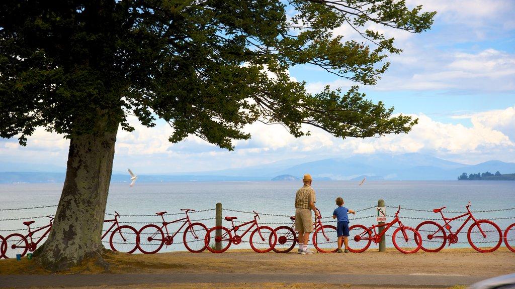 Taupo que incluye vistas generales de la costa, arte al aire libre y una bahía o puerto