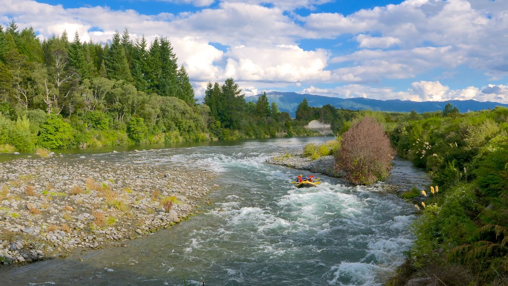 Turangi showing rafting and a river or creek