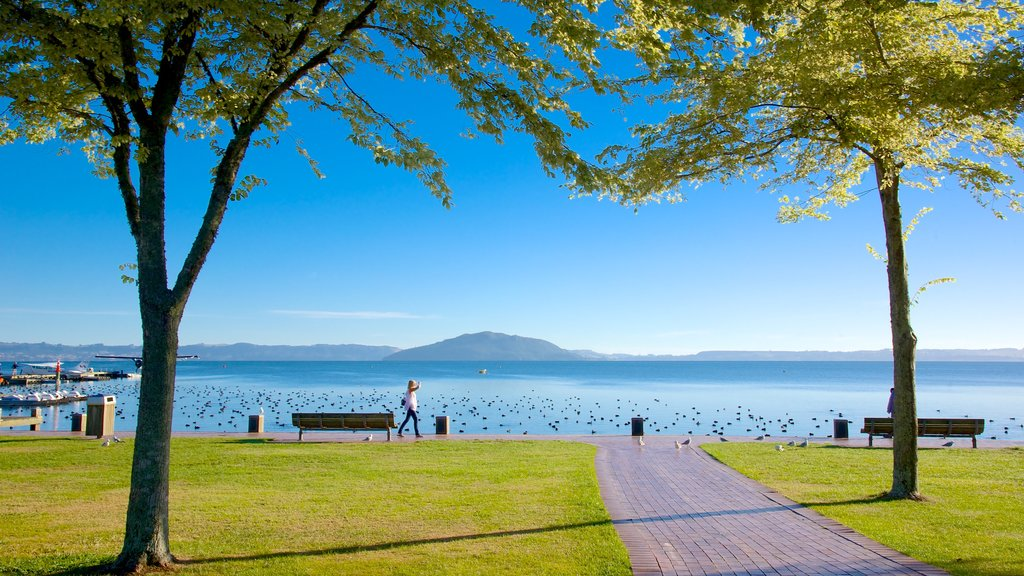Lake Rotorua which includes a garden, landscape views and a lake or waterhole