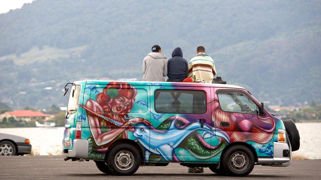 Lake Rotorua ofreciendo arte al aire libre y también un pequeño grupo de personas