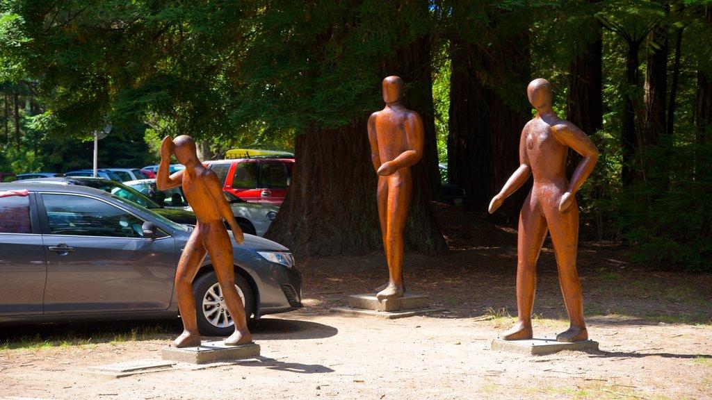 Redwoods Whakarewarewa Forest mostrando una estatua o escultura, un jardín y arte al aire libre