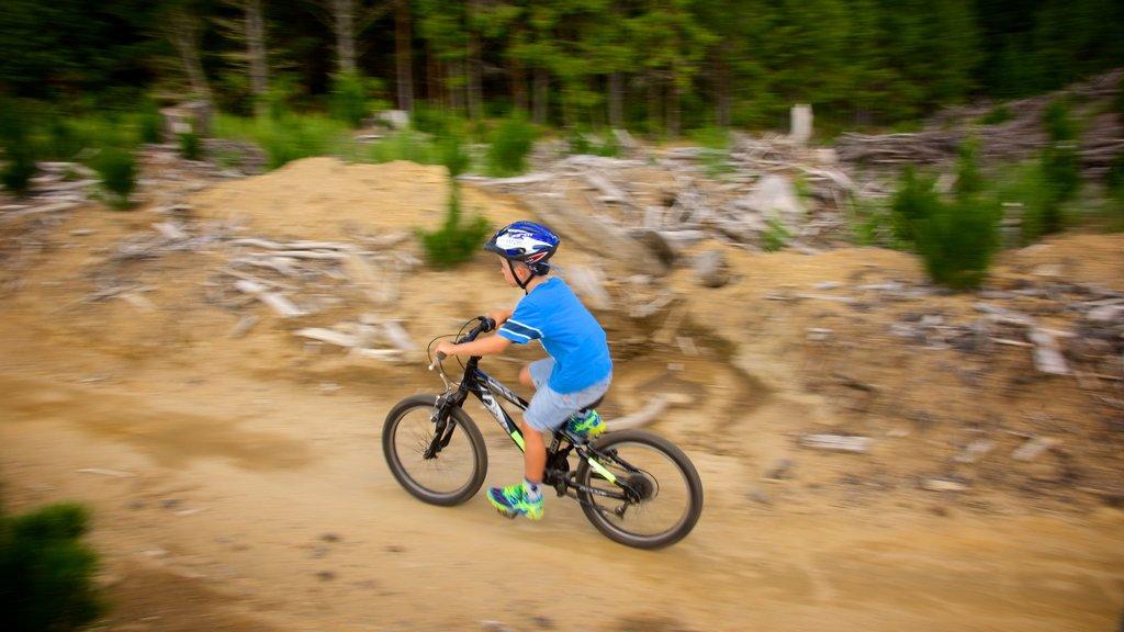 Redwoods Whakarewarewa Forest mostrando ciclismo de montaña y también un niño