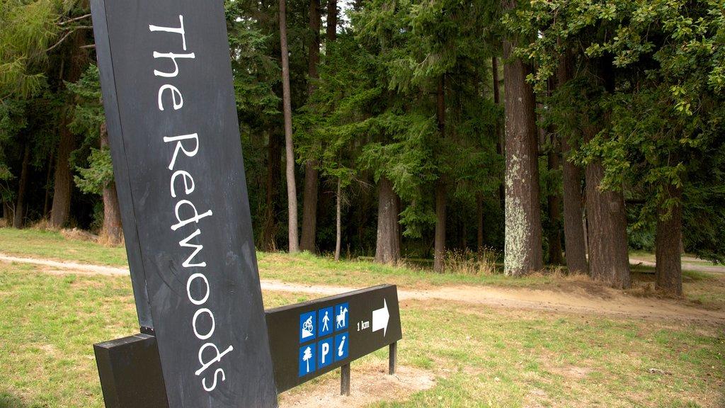 Redwoods Whakarewarewa Forest que incluye señalización y bosques