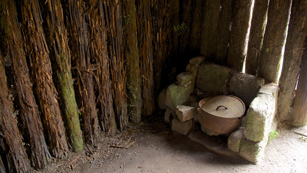 Buried Village featuring heritage elements