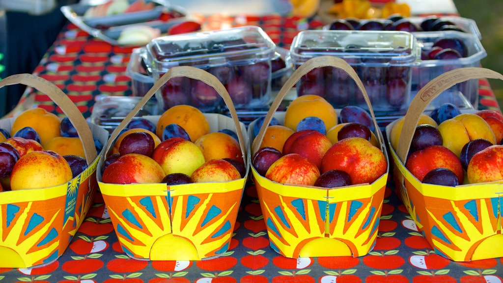 Hawke\'s Bay which includes markets and food