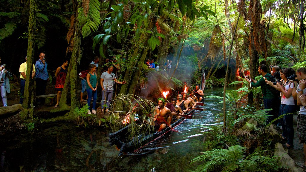 Rotorua showing indigenous culture, a river or creek and rainforest
