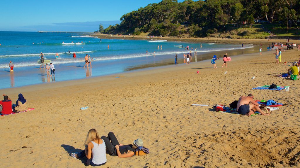 Lorne which includes a sandy beach as well as a large group of people