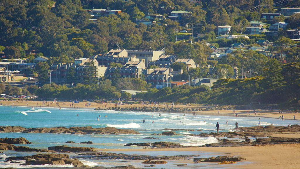 Lorne which includes a beach and rugged coastline