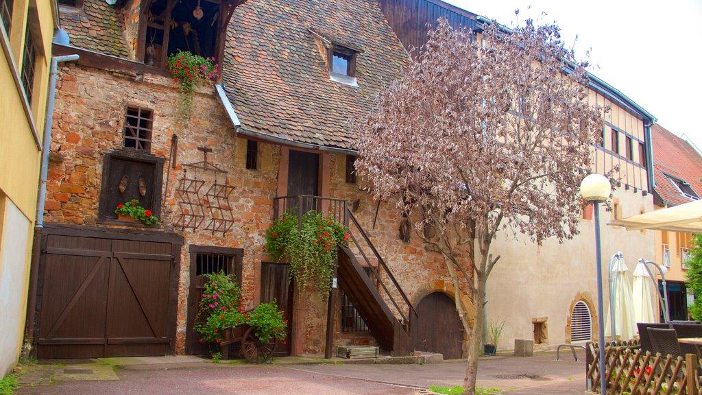 Colmar showing heritage elements