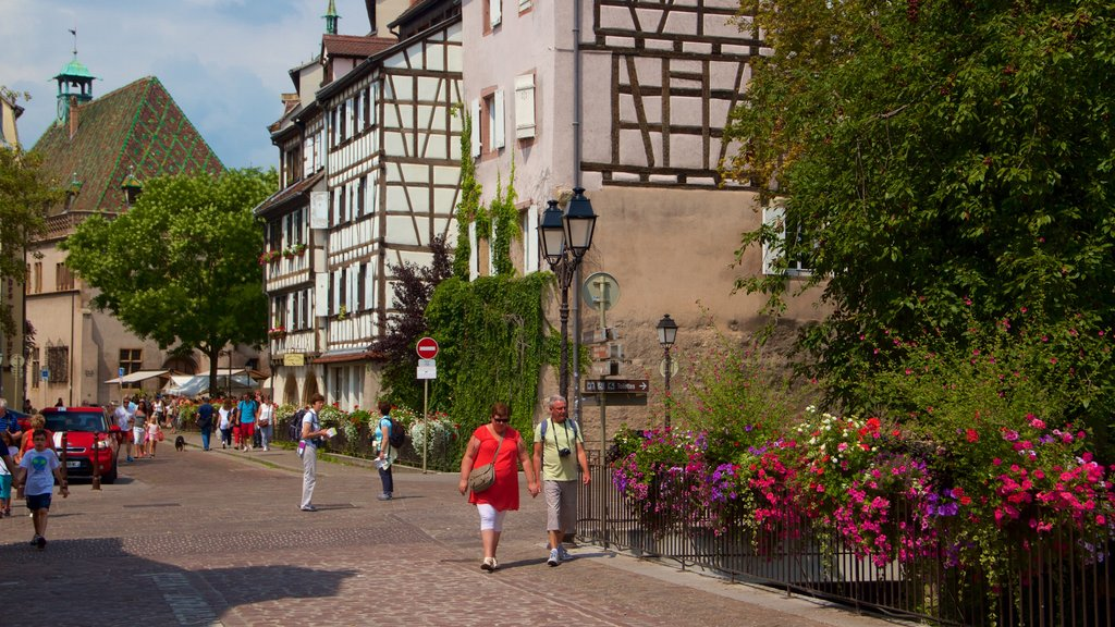 Colmar featuring a city, flowers and street scenes