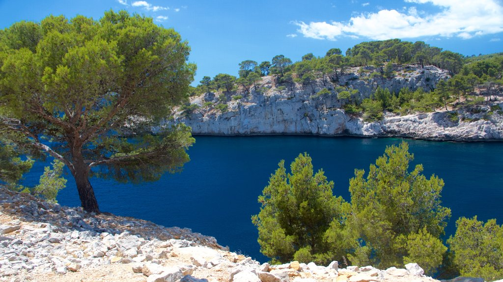 Calanques showing tranquil scenes and a river or creek