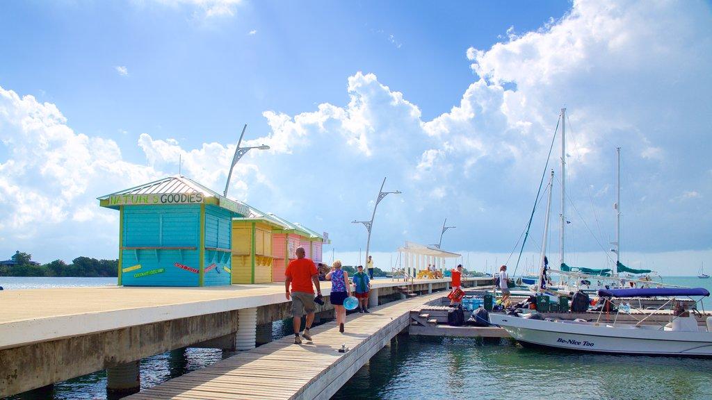 Placencia Beach featuring a marina and general coastal views