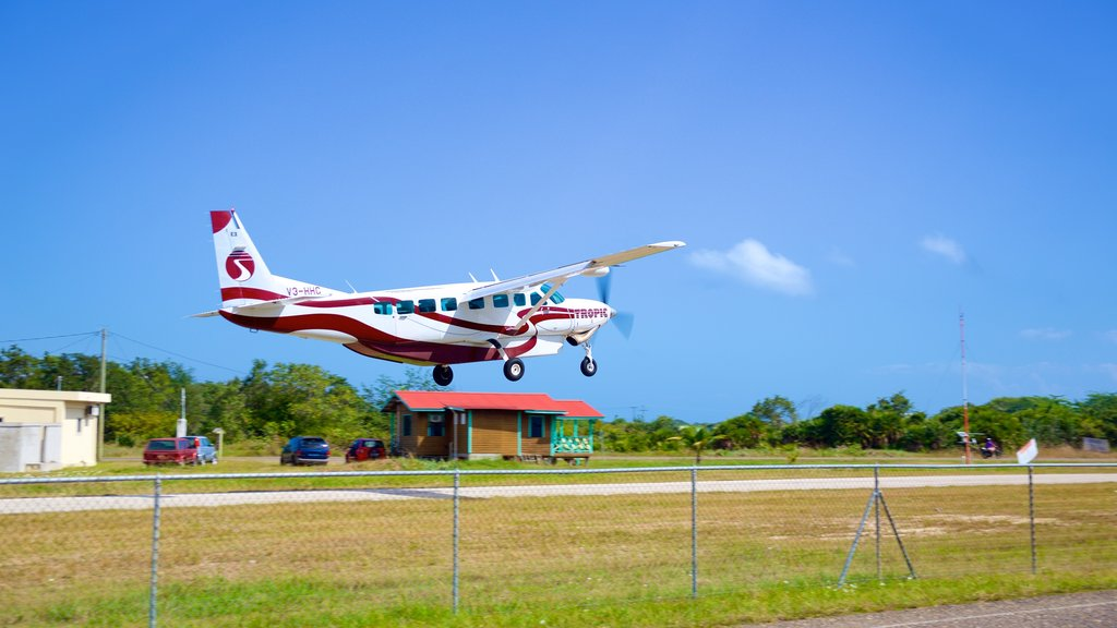 Placencia Beach showing aircraft and an airport