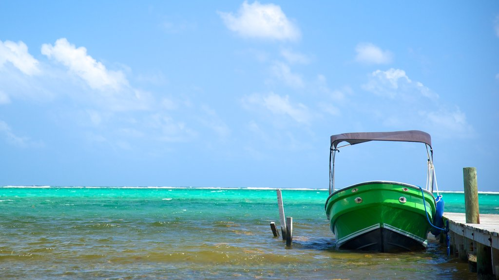 San Pedro showing general coastal views and boating
