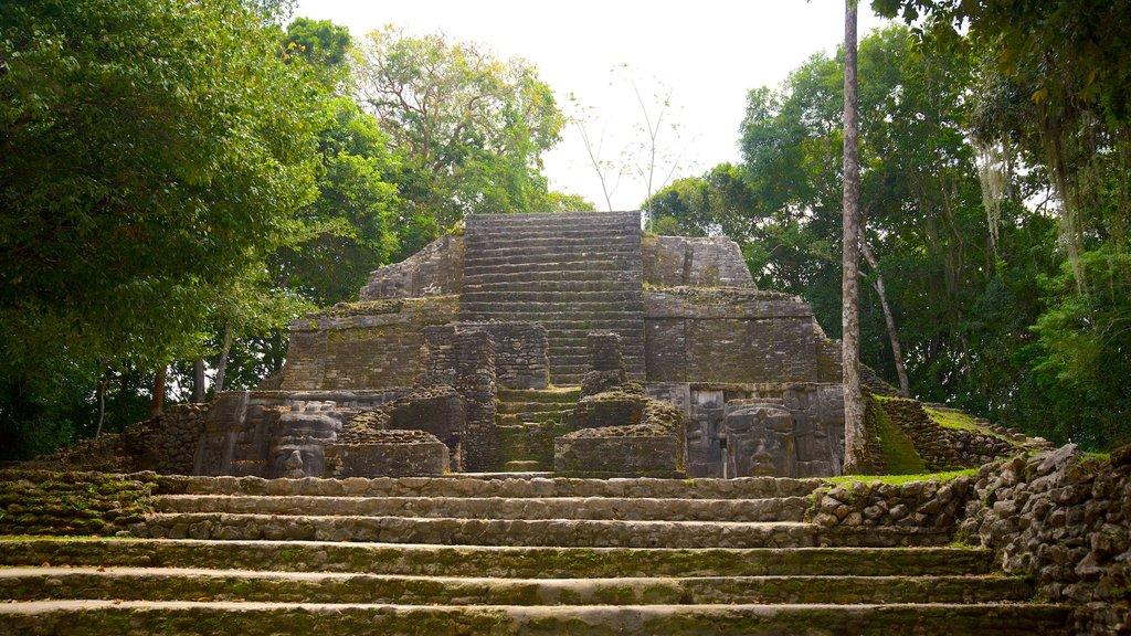 Lamanai mostrando elementos del patrimonio y cultura indígena