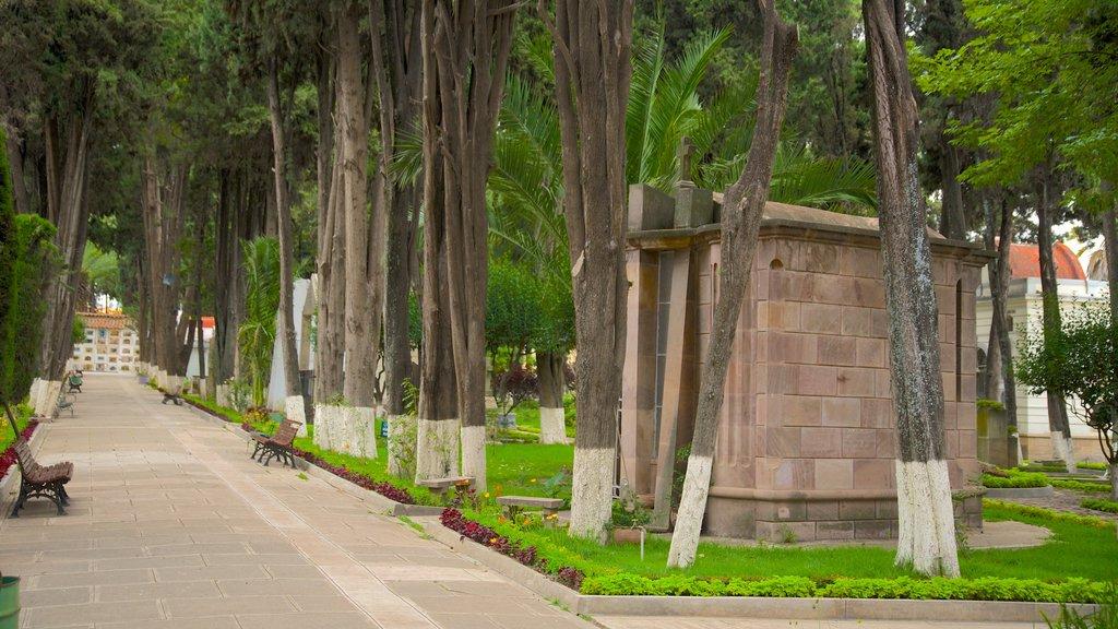 Sucre which includes a park