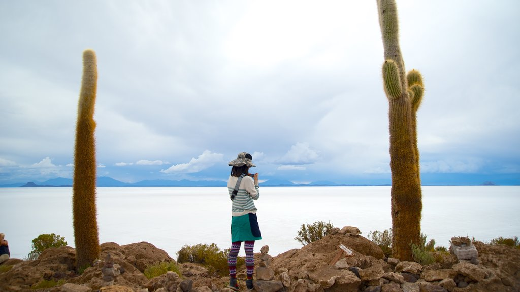 Salar de Uyuni showing tranquil scenes as well as an individual femail