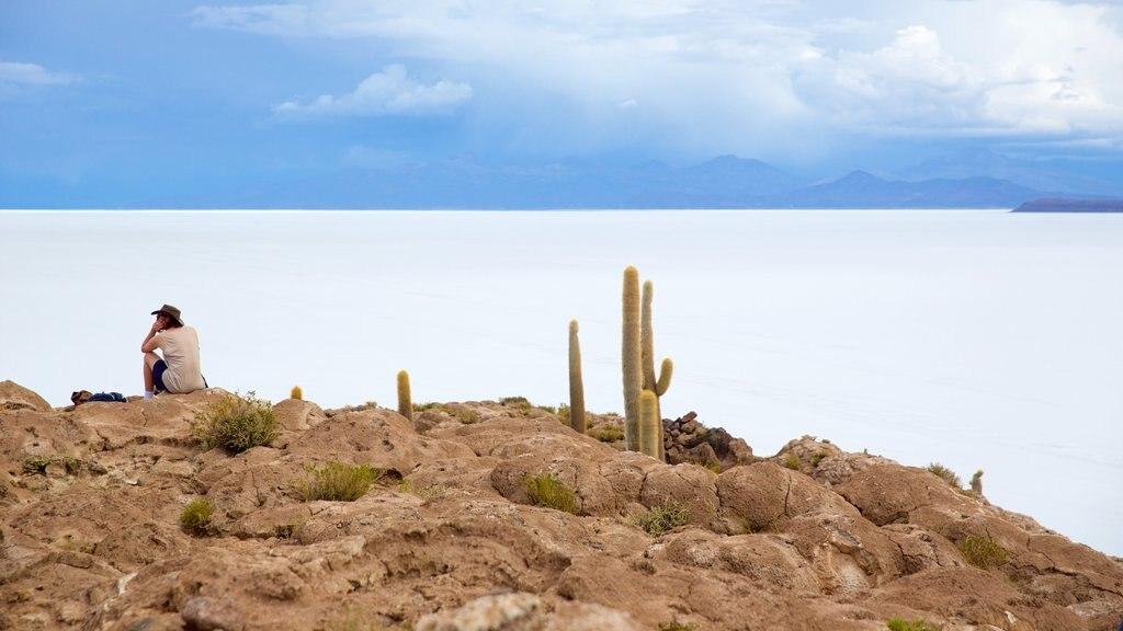 Salar de Uyuni ofreciendo escenas tranquilas