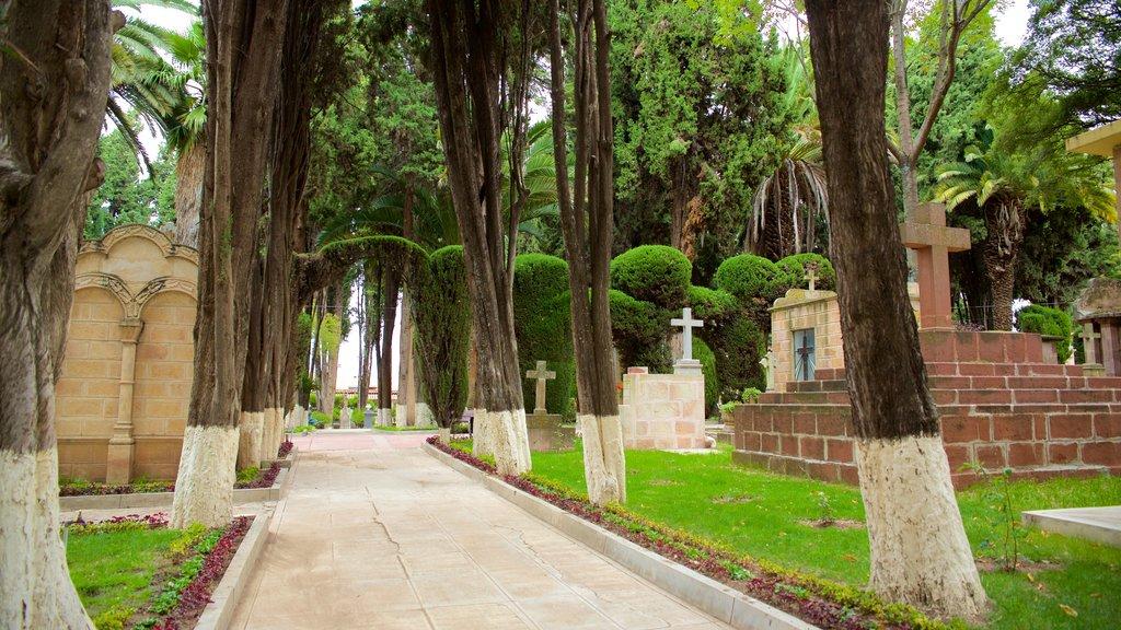 Sucre showing a park