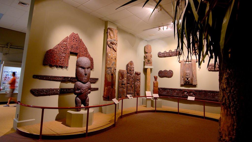 Canterbury Museum ofreciendo vistas interiores