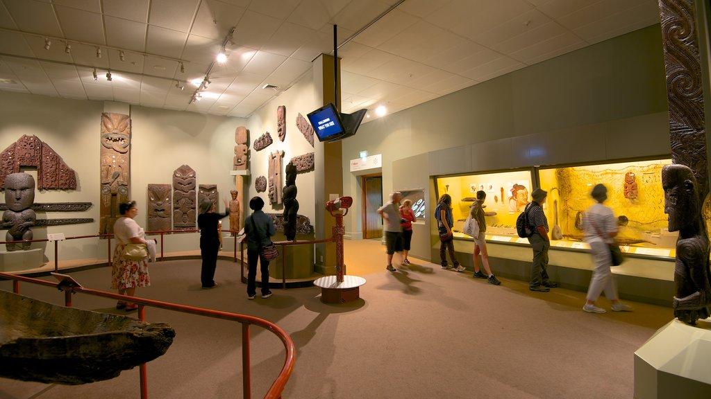 Canterbury Museum que incluye vistas interiores