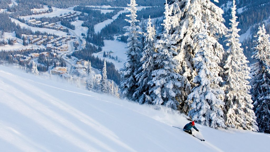 Sun Peaks featuring snow, a small town or village and snow skiing